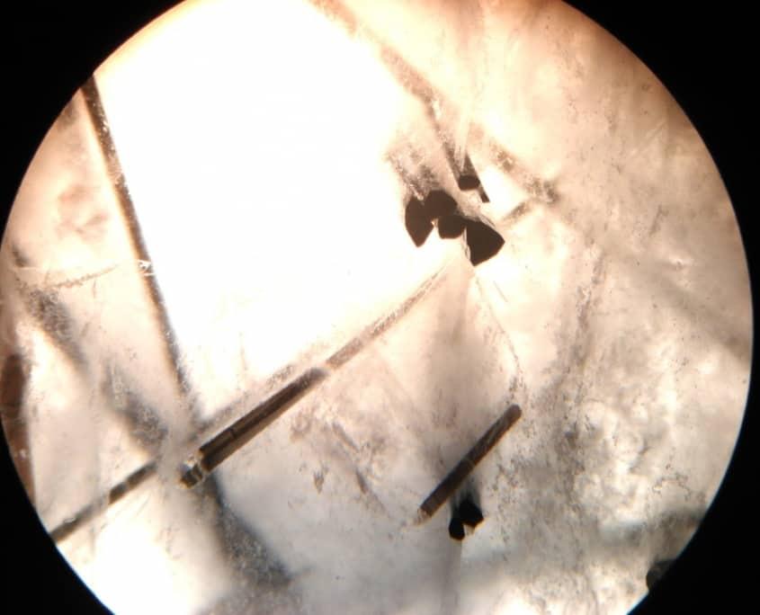 les inclusions dans les pierres précieuses : inclusions de tourmaline dans un quartz
