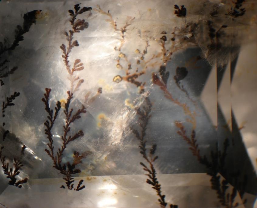 les inclusions dans les pierres précieuses : quartz dendritique